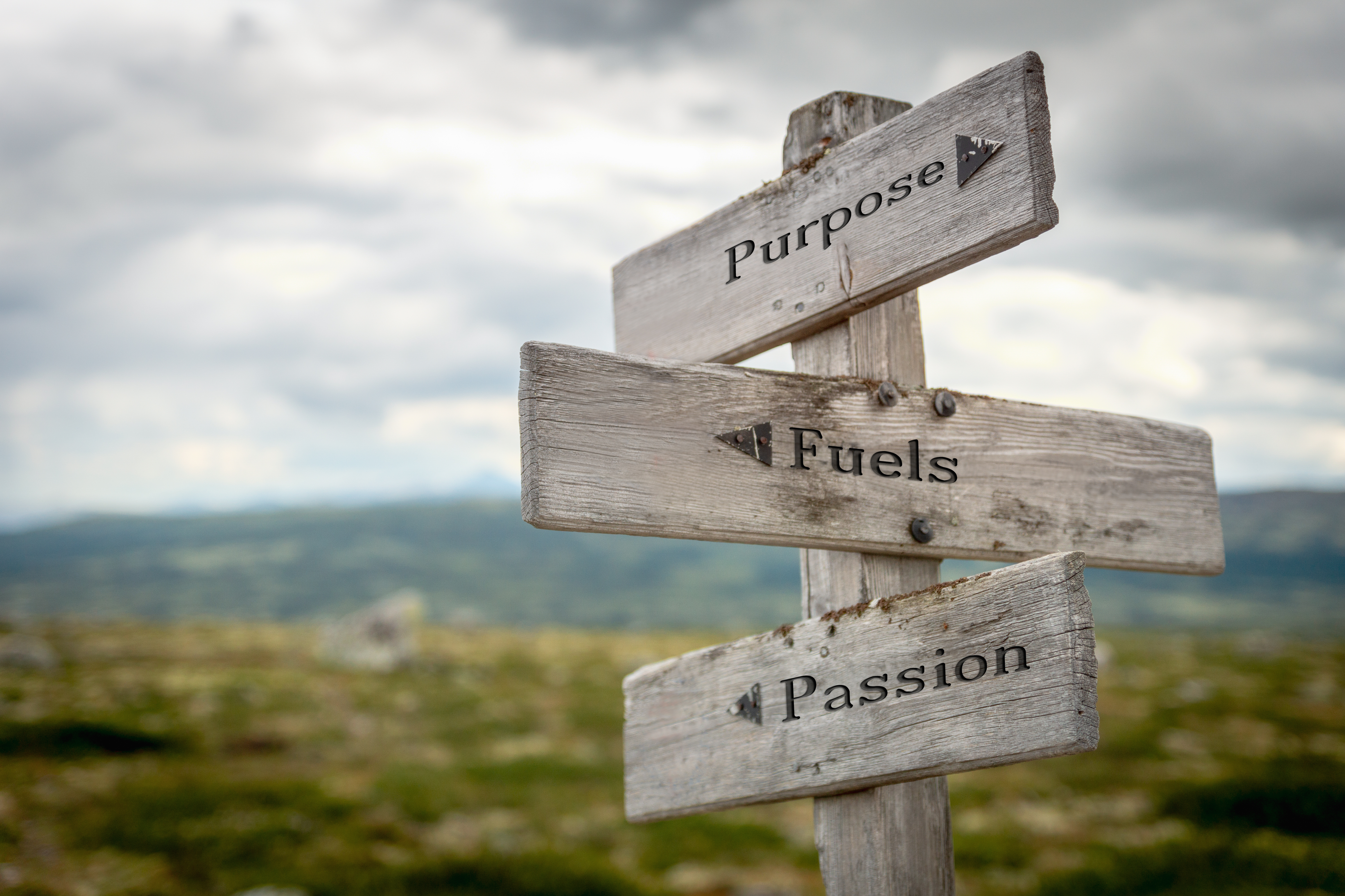 Purpose Fuels Passion and Performance