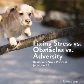 033: Fixing Stress, Obstacles and Adversity